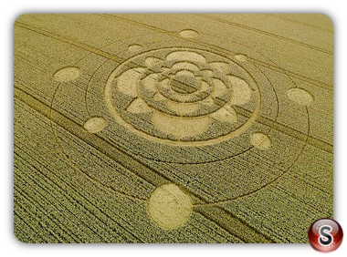 Crop circles Furzefield Shaw, Surrey UK 2015