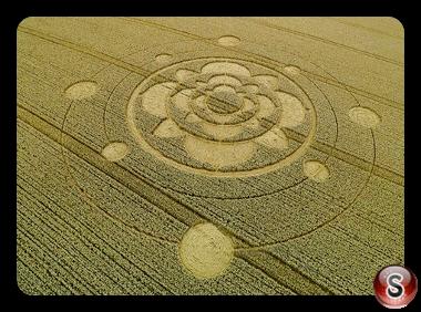 Crop circles - Furzefield Shaw Surrey UK 2015
