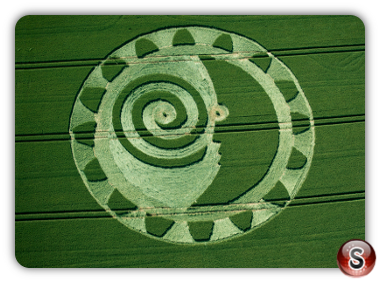 Crop circles Ackpen hill Wiltshire UK 2014