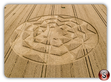 Crop circles Tufton - Hampshire  2019