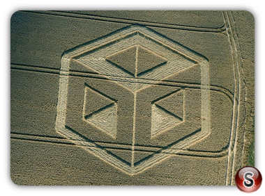 Crop circles - Bishop Sutton Hampshire 2009