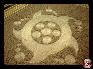 Crop circles - Newton, St Loe, Avon 2001