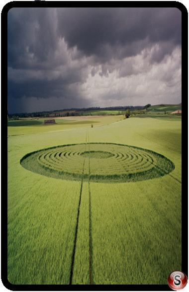 Crop circles - Beckhampton, Wiltshire 1995