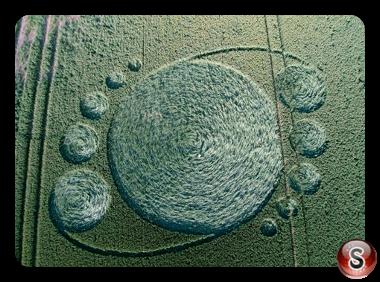 Crop circles - Merenswegje Noord Brabant 2015