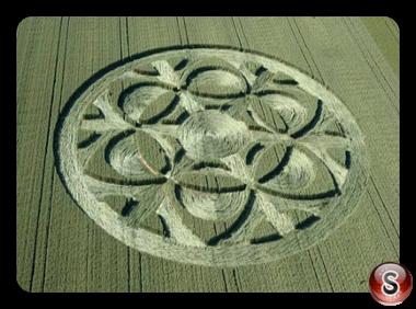 Crop circles Büren an der Aare - Bern 2019