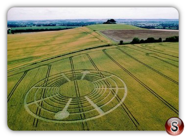 Crop circles - Woodborough Hill 2004