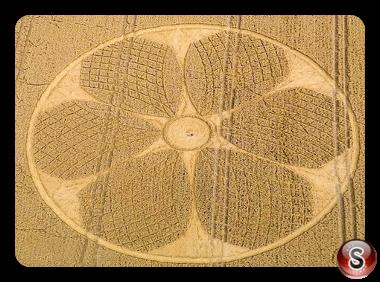 Crop circles - Westbury Wiltshire 2016