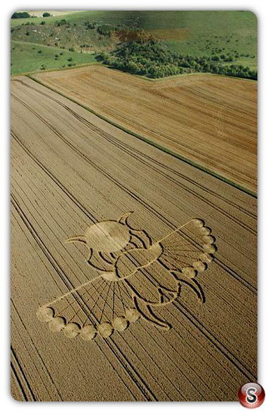 Crop circles - East Field, Alton Barnes, Wiltshire 2005