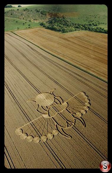 Crop circles - East Field Alton Barnes Wiltshire 2005