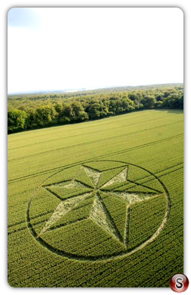Crop circles Black Wood Near Popham Airfield Hampshire 2014