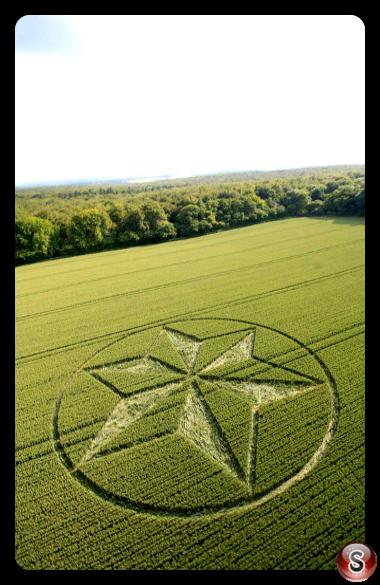 Crop circles - Black Wood Near Popham Airfield Hampshire 2014