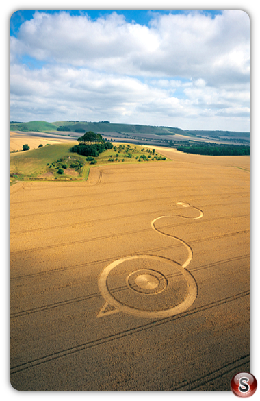 Crop circles - Woodborough Hill, Wiltshire 2003