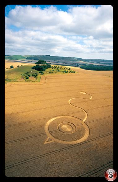 Crop circles - Woodborough Hill Wiltshire 2003