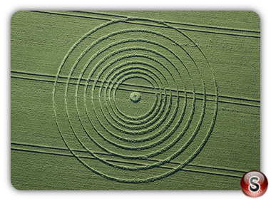 Crop circles - Avebury Wiltshire UK. 2013