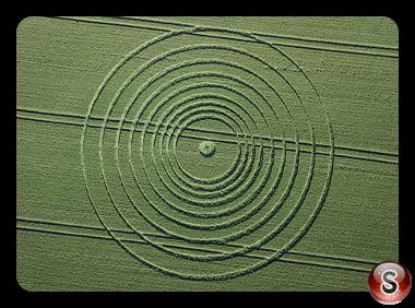 Crop circles - Avebury Wiltshire UK 2013