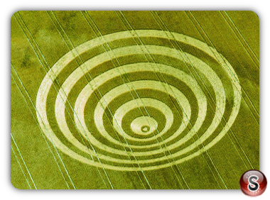 Crop circles - Cissbury Rings West Sussex 1995