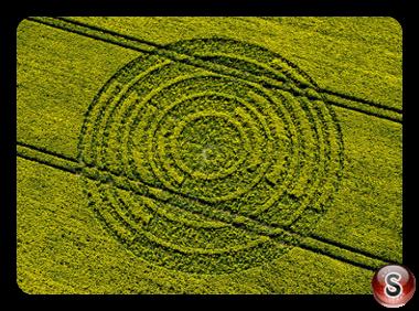 Crop circles - Ridgeway Wiltshire 2004
