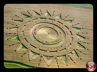 Crop circles Torino, Piemonte Italy 2015