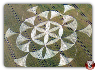 Crop circles Walmsgate, Lincolnshire UK 2011