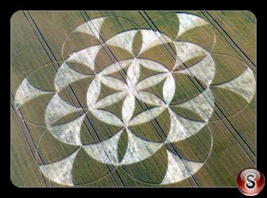 Crop circles Walmsgate Lincolnshire UK 2011