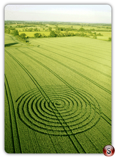 Crop circles Sherston, Wiltshire UK 2015