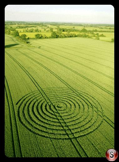 Crop circles - Sherston Wiltshire UK 2015