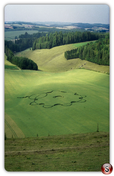 Crop circles - Punch Bowl, Hampshire 1995