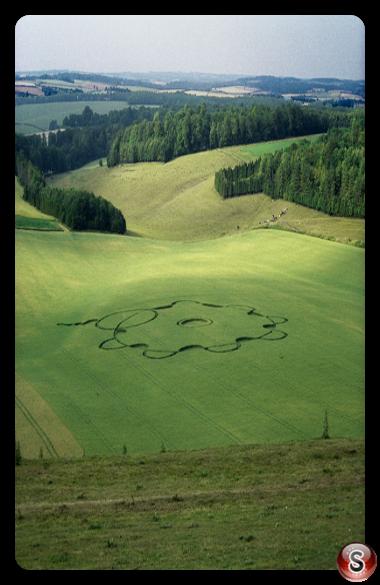 Crop circles - Punch Bowl Hampshire 1995