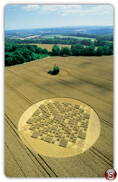 Crop circles - Forest Hill Aldbourne Wiltshire 2004