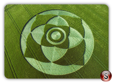 Crop circles - Wexcombe Down, Wiltshire 2007