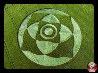Crop circles - Wexcombe Down Wiltshire 2007