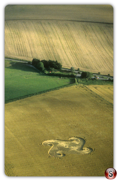 Crop circles - Danebury Ring, Hampshire 1998