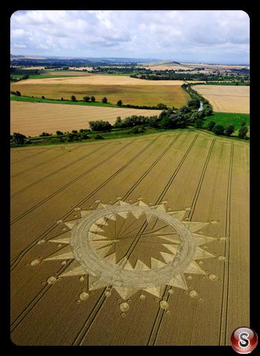 Crop circles - Cannings Cross Farm Allington Wiltshire 2009