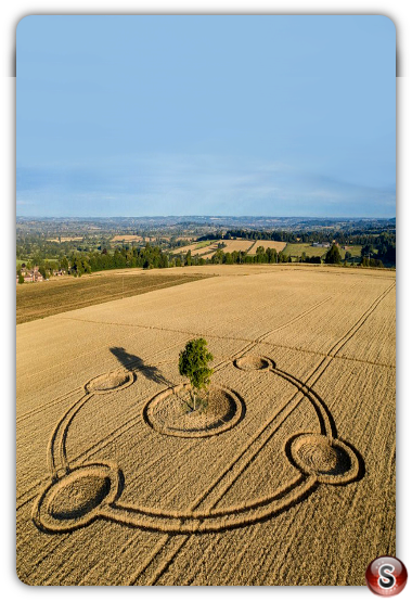 Crop circles Potterne - Wiltshire 2020