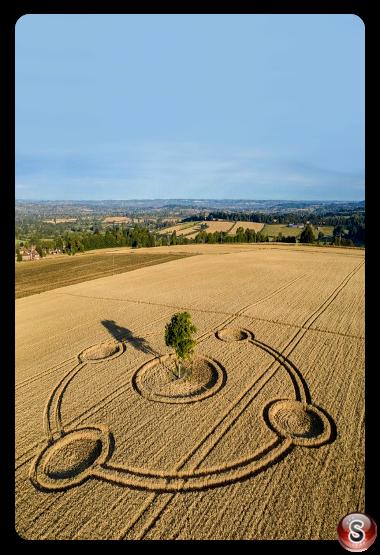 Crop circles - Potterne Wiltshire 2020