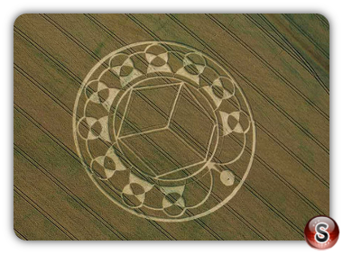 Crop circles - Etchilhampton Hill UK. 2013