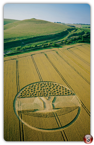 Crop circles - East Field, Wiltshire 2002