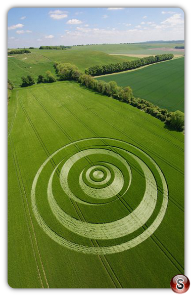 Crop circles - Winterbourne Monkton, Wiltshire 2007