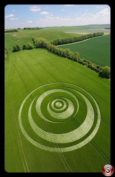 Crop circles - Winterbourne Monkton Wiltshire 2007