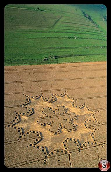 Crop circles - Milk Hill Wiltshire 1997