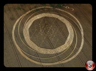 Crop circles Jubilee Plantation, nr Cherhill - Wiltshire 2011