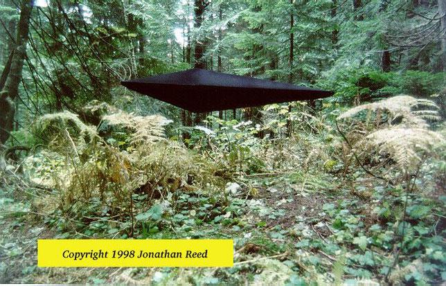 Foto dell'oggetto non identificato (UFO) fatta dal Dr. Jonathan Reed