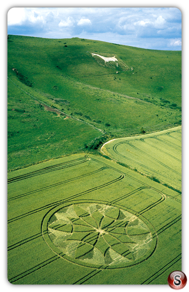 Crop circles - Milk Hill, Wiltshire 2000