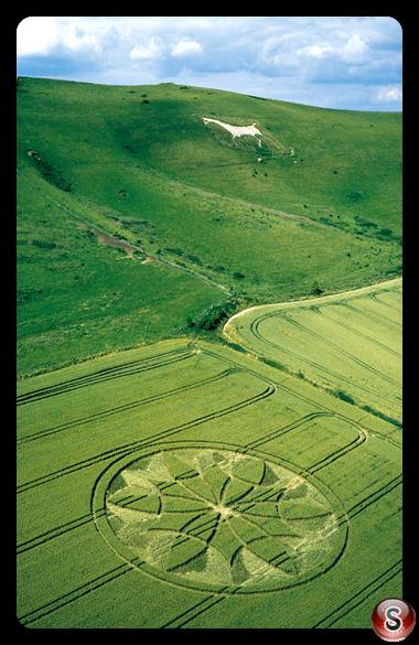 Crop circles - Milk Hill Wiltshire 2000