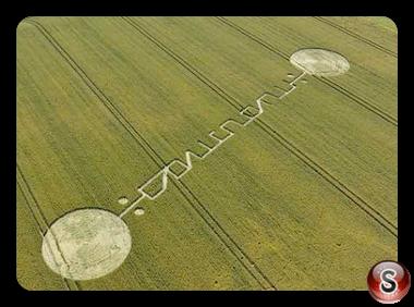 Crop circles Stanton St Bernhard Wiltshire UK 2011