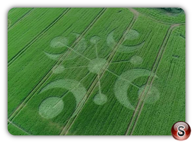 Crop circles - Buckland Down Dorset 2018