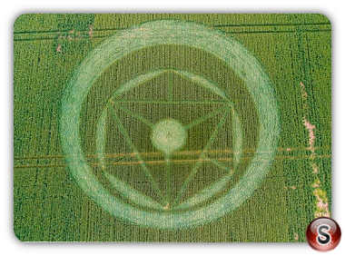 Crop circles Southen on Sea 2014 Essex 2014
