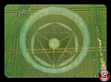 Crop circles - Southen on Sea 2014 Essex 2014