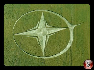 Crop circles Wiltshire UK 2013