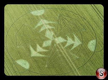 Crop circles - Hacken Hill Wiltshire 2016